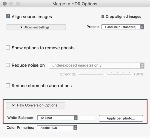 Photomatix Pro RAW conversion settings