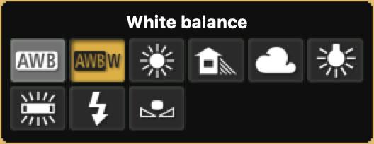 White Balance setting icons